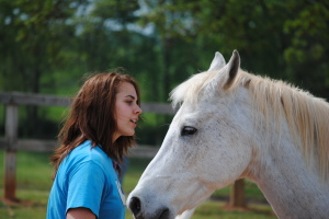 Equine Relationship Therapy Program at Shepherd's Hill Academy